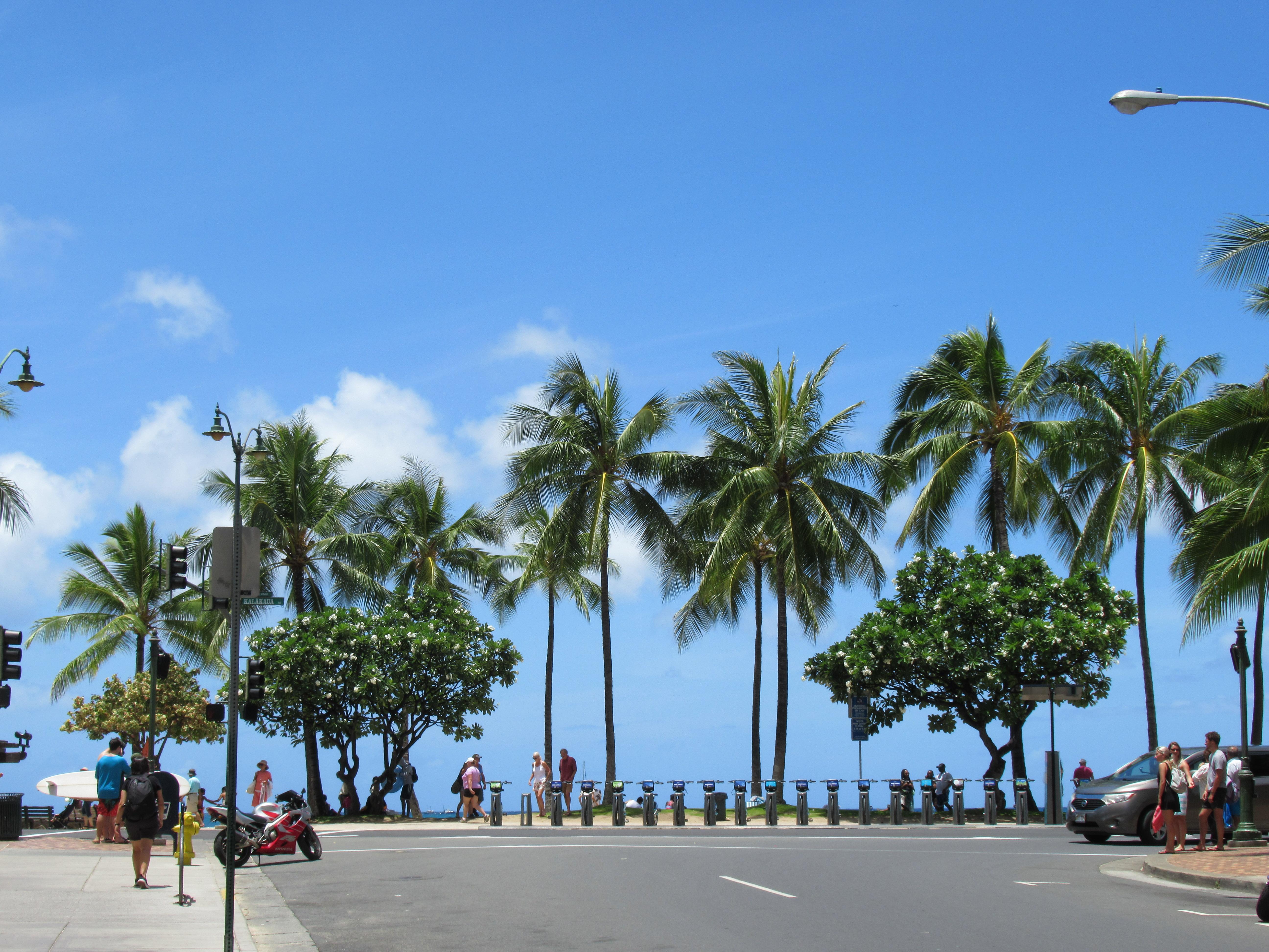 ハワイ個人旅行の手配は何が必要?注意点は?出発前の準備は意外と簡単|ハワイ旅ブログ