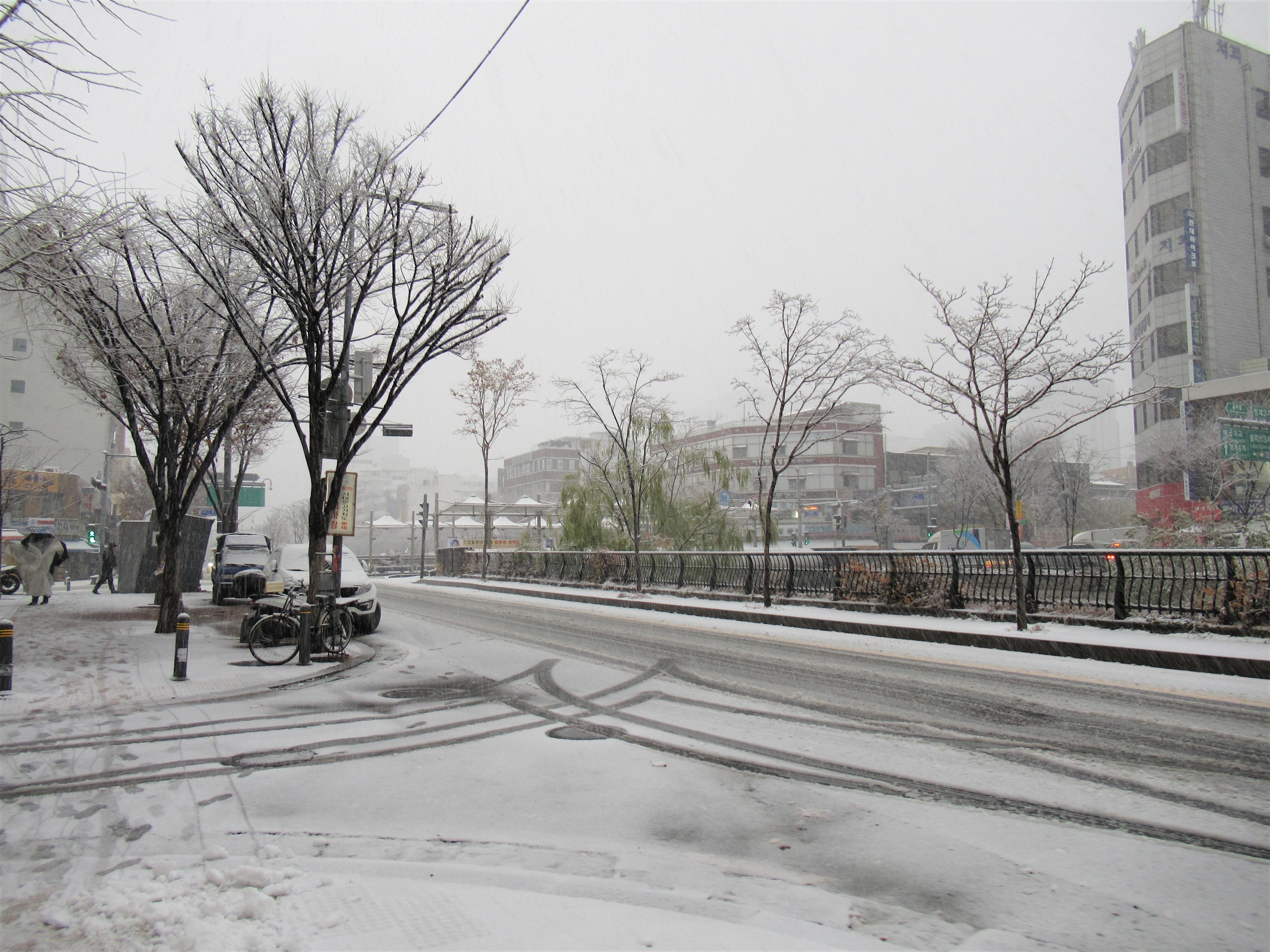 韓国の天気予報は当たらない?実際にソウルと釜山の天気で比較した結果|韓国ブログ旅