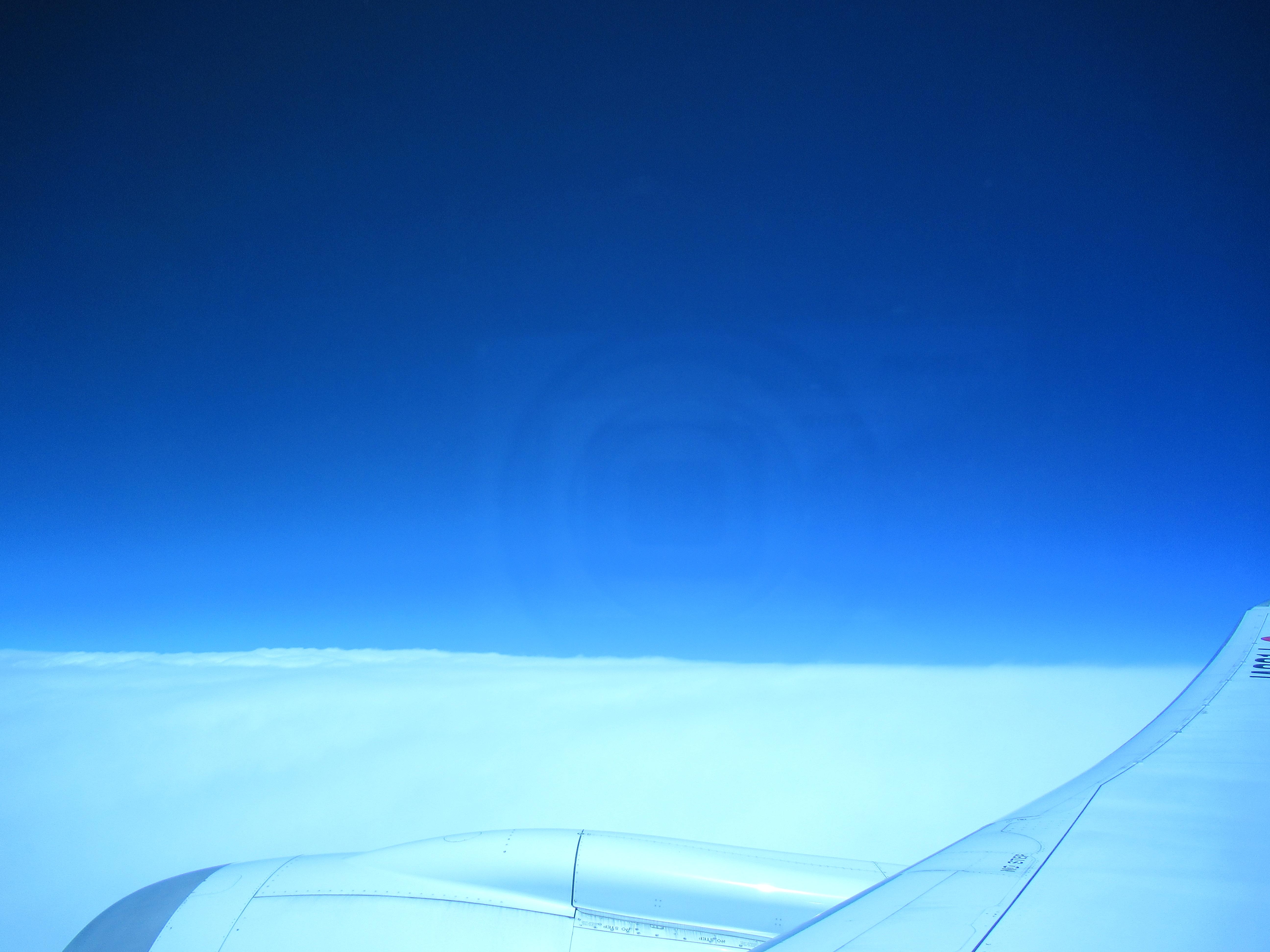 JALのハワイ便|子ども用のチャイルドミールと大人用機内食ルポ