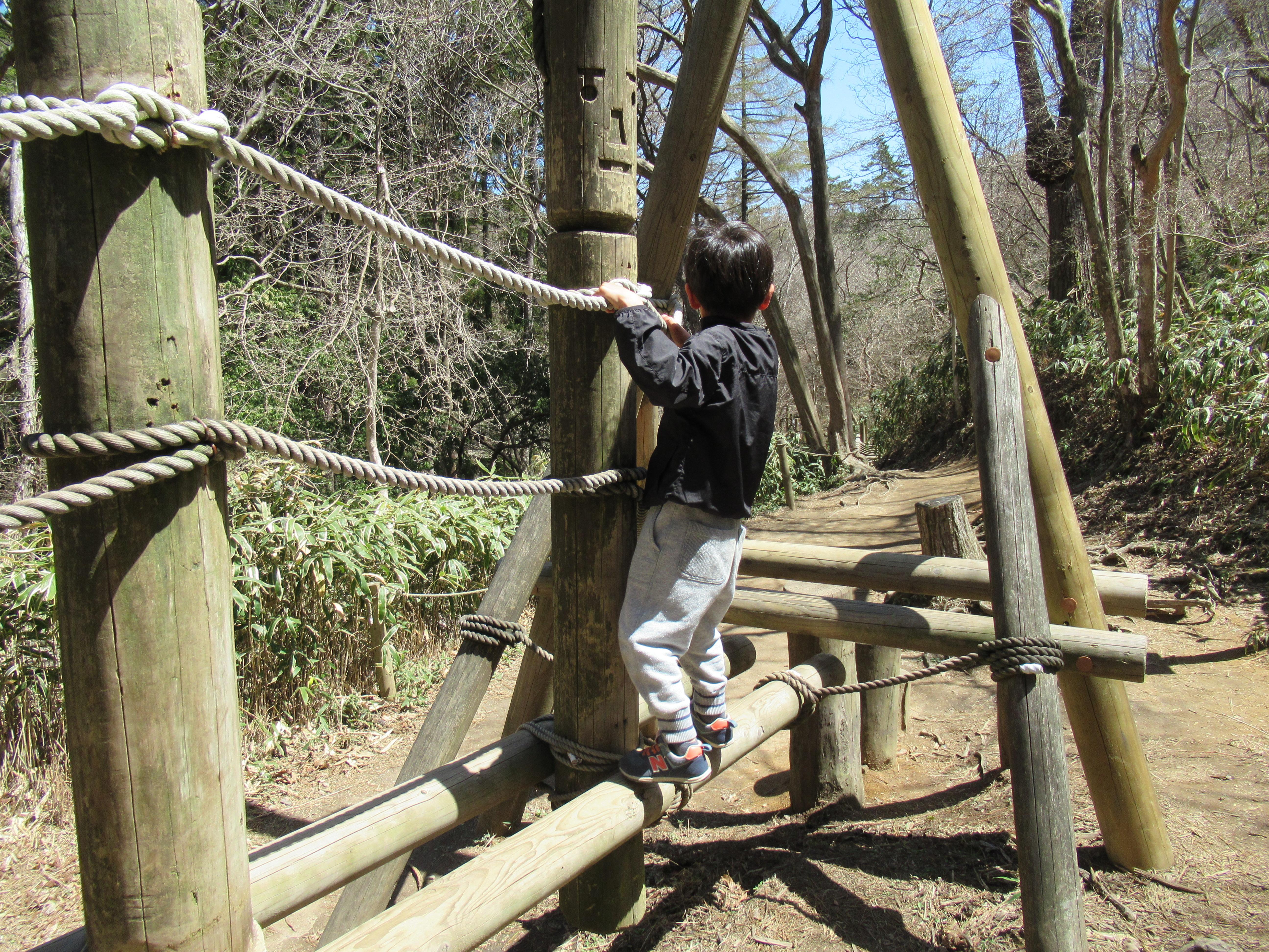 六甲山フィールドアスレチックは何歳から?楽しめる年齢と持ち物