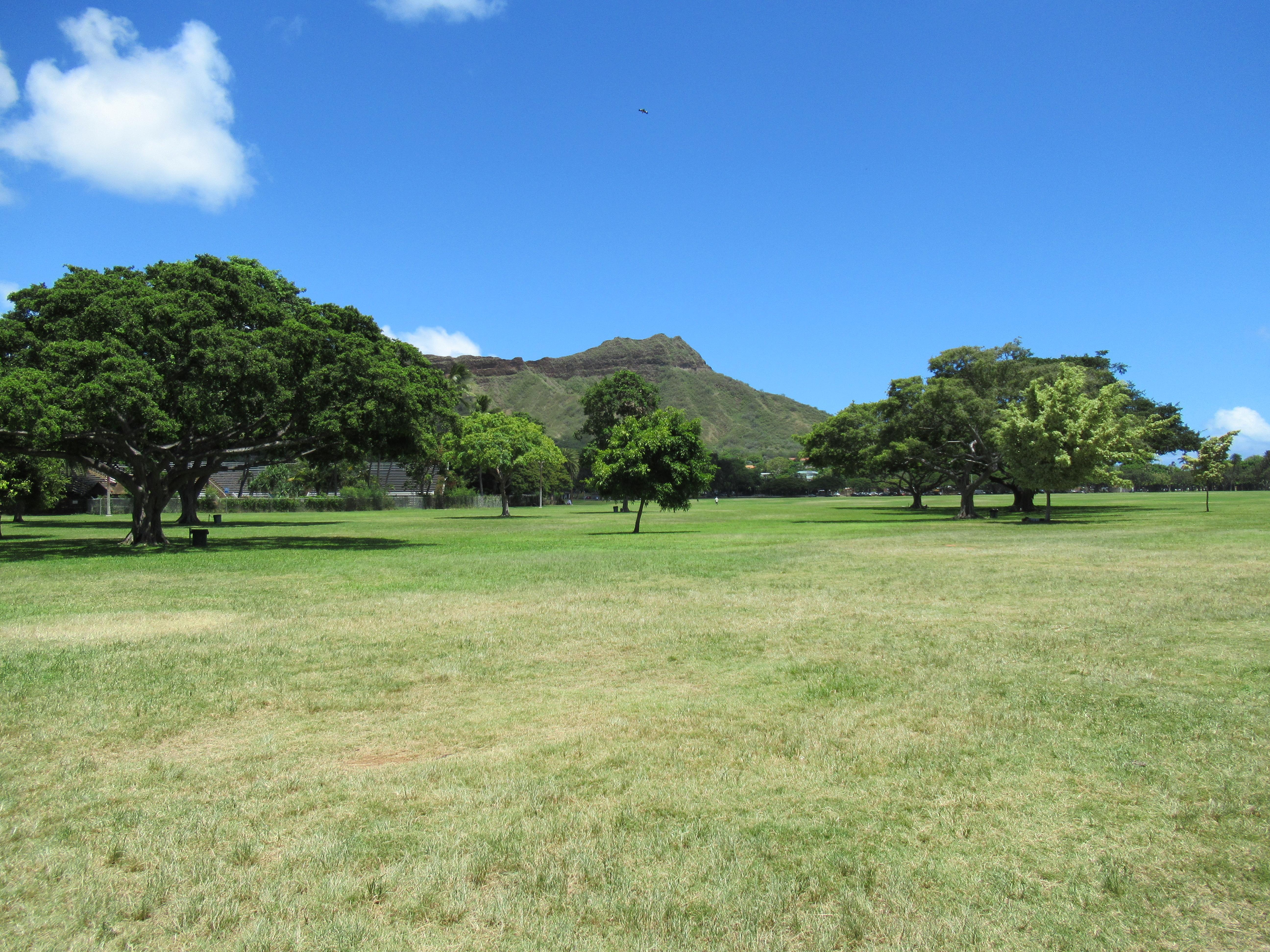 カピオラニ公園でピクニック☆ランチメニューはマクドナルドのサイミン|ハワイ子連れブログ