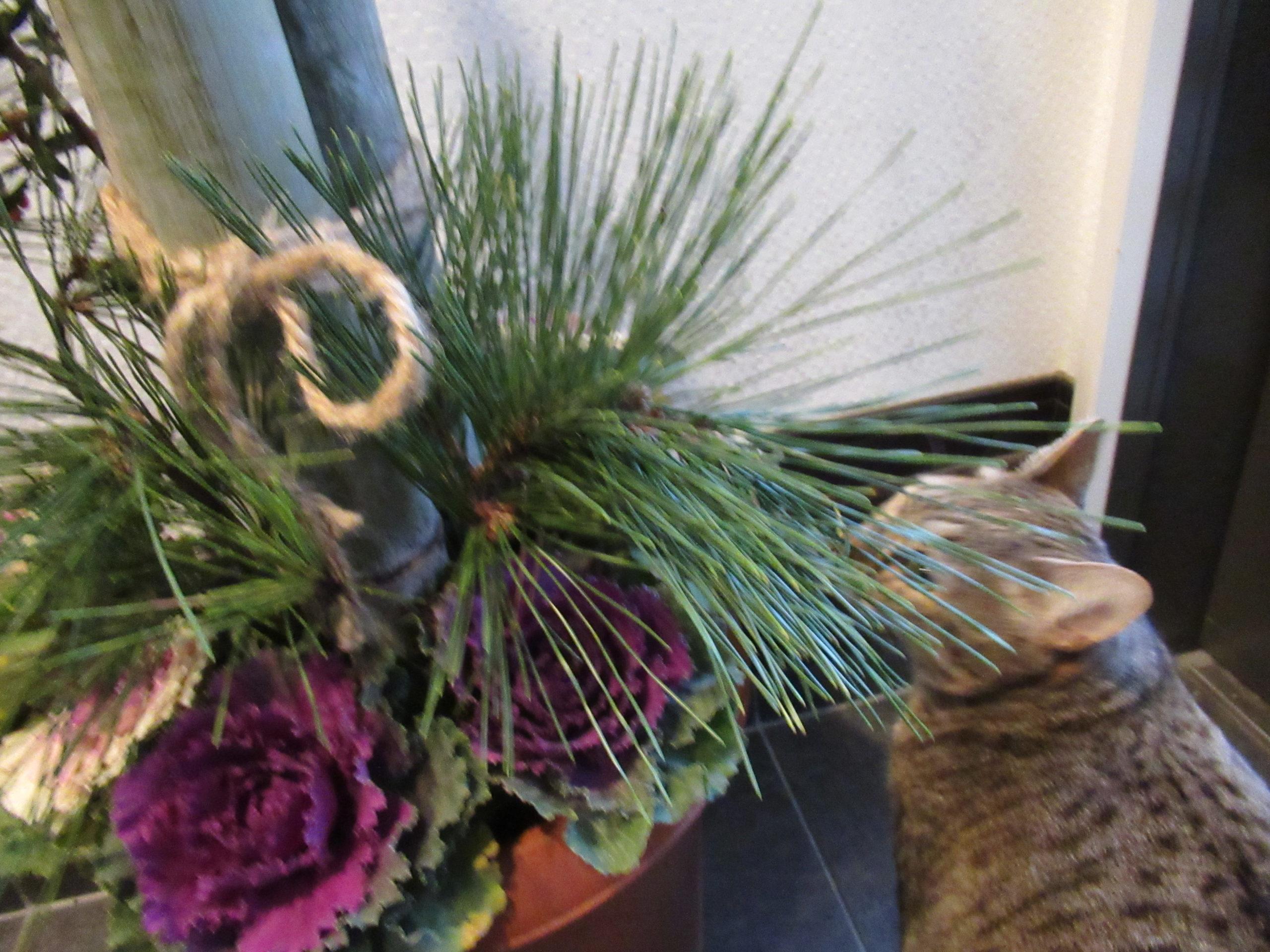 「門松」の簡単な作り方!子どもと一緒に楽しく正月準備|子育ては面白く